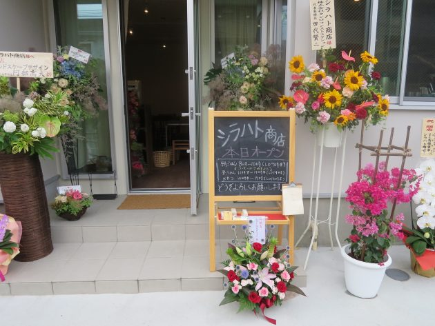 16629-shirahato-open-1